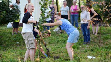 pierwsza akcja czyli sadzenie drzew