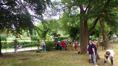 Wolontariusze sprzątają ogród