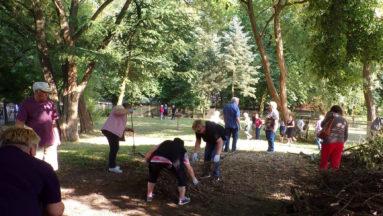 Wolontariusze porządkują liście i gałęzie w ogrodzie