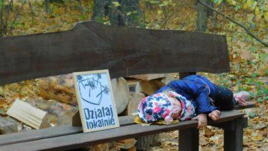 Wyjazd podsumowujący projekt DL w Górkach (Arboretum Lipno)