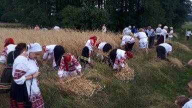 Zdjęcie przedstawia osoby ubrane w tradycyjne stroje, pracujące w polu.