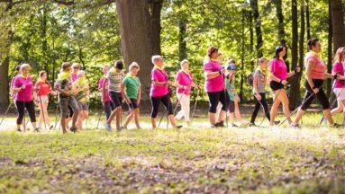Zdjęcie przedstawia grupę osób maszerujących w lesie z kijami do nordic walking.
