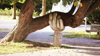 Zdjęcie przedstawia pochyłe drzewo, którego konar opiera się na rzeźbie przedstawiającej dłoń.