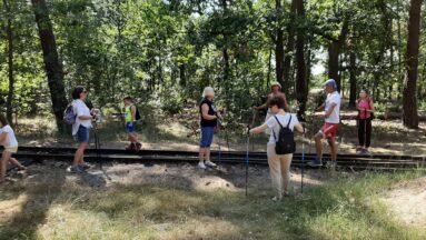 Uczestnicy maszerują w lesie