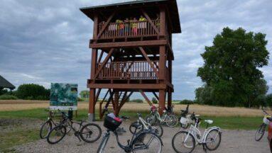 Rowery stojące w plenerze.