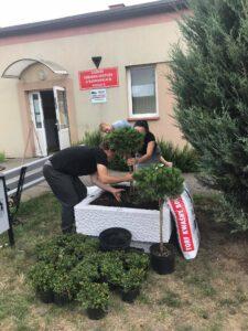Trzy osoby przypracy - sadzeniu roślin wdonicach