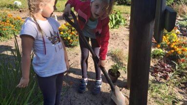 Na zdjęciu widać dzieci pracujące w ogrodzie
