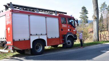 Strażacy w walce w COVID